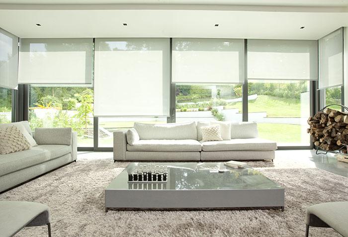 Рулонные шторы в интерьере современной гостиной