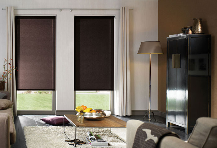 Светонепроницаемые рулонные шторы в стильном интерьере гостиной